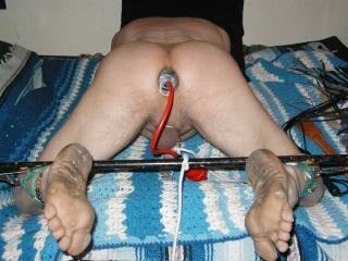 tonyslave male hole plugged with inflatable dildo