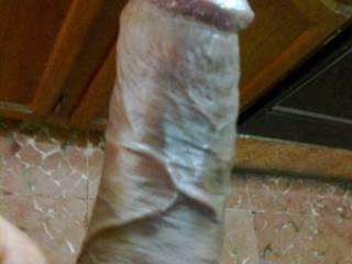 my erect cock in kitchen