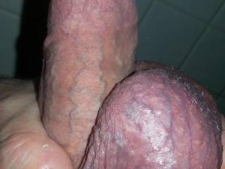 Love stretching my balls up my shaft.  Anyone up for taking cock and balls in your mouth at the same time?