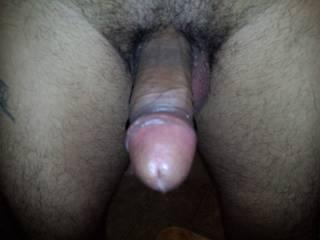 Very nice big thick suckable cock