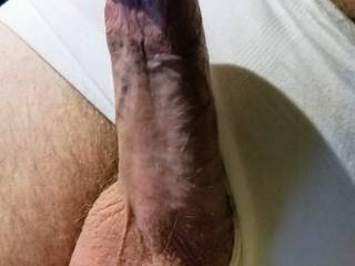 Can I get a little help here, need some hot wet pussy to warm my cock right now!