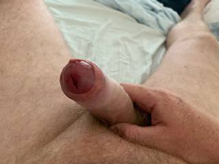 My cock head just peering out to see what fun we can have today.  Balls full of cum and dick hard for a willing playmate.