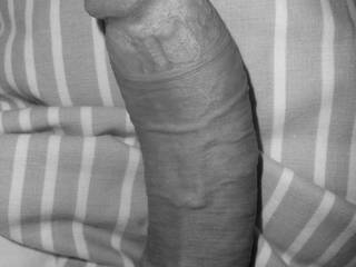 my hard cock in the morning, after up