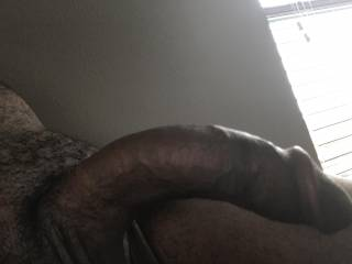 I want a sexy white bitch to suck my dick