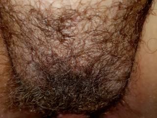 fucking wife's hairy pussy