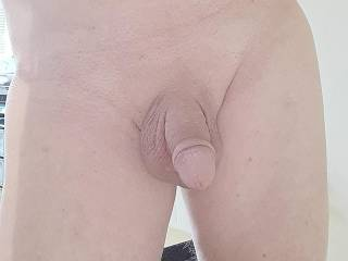 Shaved, smooth dick soft,