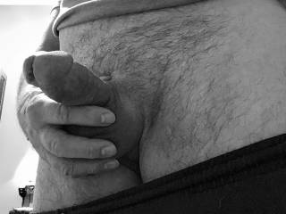 Do you like it soft, semi hard or fully erect when you suck it? Anyway you want it.
