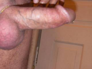 Hard cock with a droplet of precum. Who wants it?