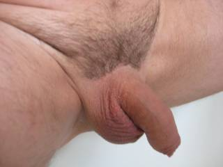 You have a very nice smooth uncut cock, like to play with it.