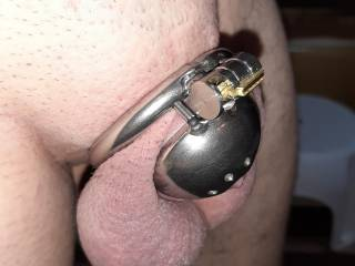Hubby has been a bad boy... jerking off his little cock when he\'s home alone!  No more erections for him for a little while 😈