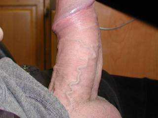 My cock ring might be a little tight! What do you think?