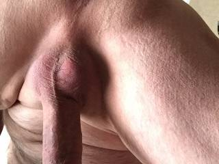 Start by licking the tip and then sucking the ass. Anyone?