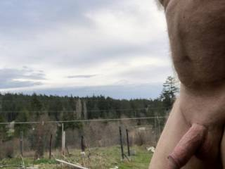 Nice day, but I'm going back inside and take care of this swollen penis.