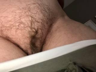 Full hairy winter bush