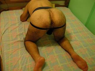 i need hard big cocks for my mouth and my hairy ass