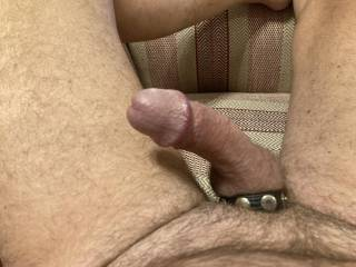 Feeling horny trying the snap on cock ring, gets my cock hard ready for fucking somebody!!!