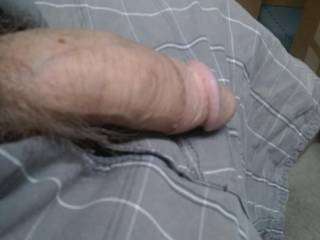 Just my little cock. Getting hard