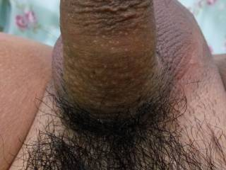 How is my small cock?