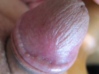 My cute little cock stands up so nicely when he plays with his toys.  See how pretty he looks?