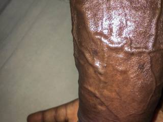 The Veins that adorn my dick are just to die for... Don\'t you want this dick deep in your pussy?