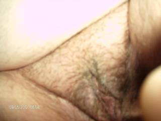 My lovely lovers hairy pussy