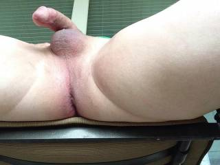 That cock and balls would look real good with us licking and sucking it