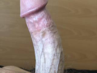 Morning wood, looking for a sweet,wet hole of your choice, in which to insert this!?!