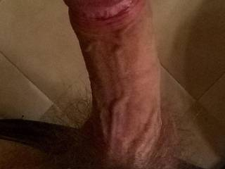 veiny and uncut thick cock