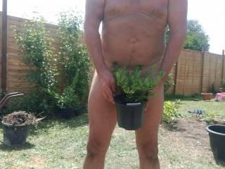 who wants to run their fingers through my bush
