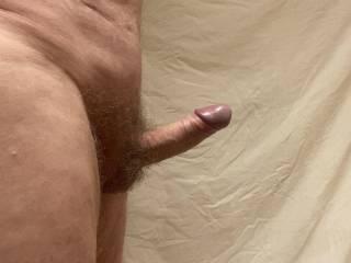 Foreskin position when erect 2