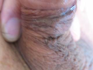 I love this view of my cute little cock.  Look at all the precum.  It's going all the way down.