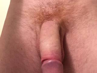 tell me what you think about red hairy cock ;)