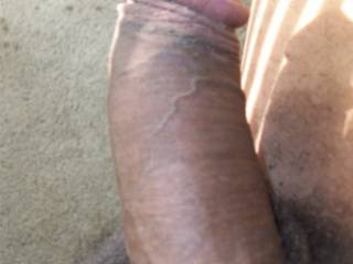 My stiff dick needs a place to bury its head....any suggestions....