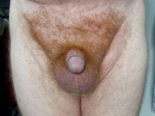 Who likes my small cock?
