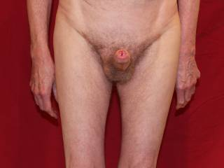 Tight balls, solid erection, open meatus..these can only mean one thing; an ejaculation is imminent.