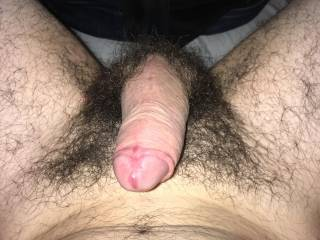 Boy showing hairy dick