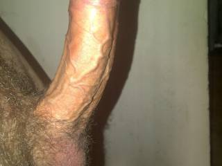 id love to see my fat cock stretch open a horny womans ass