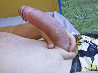 pumping my cock in the garden do you like
