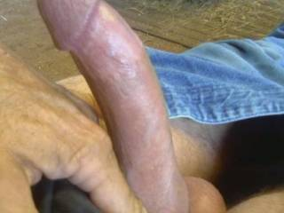 With a hard cock like yours I would take a ride anytime that you would give  me one.
