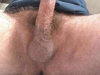 My hairy cock + balls
