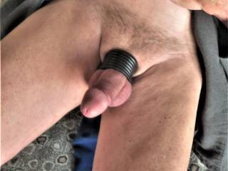 in my robe in the morning with my cock and ball restrictor on. needing to get hard and cum.