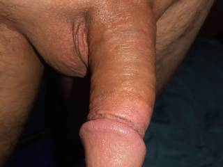 Another small cock