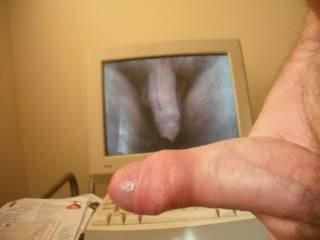 Two views of my prick for the price of one dedicated with much love and affection to my beautiful friend ssenior.  Much love, hugs, blowjobs and pussy licks, babe, xxxxxxxxxxxxx