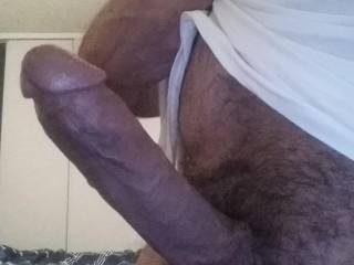 My dick is hard will someone suck it please?
