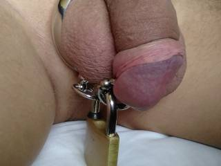 I locked Wills cock by his PA to a cock ring!