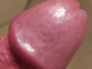 uncut cock head