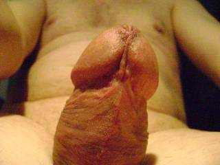 Love your cock.  Suck first, then sit.