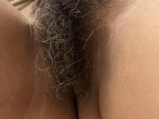 Hairy?