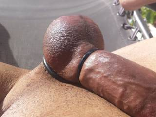 Stroking my cock in the back yard