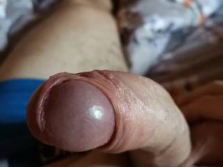 my cock is ready for fuking so hard and so deep